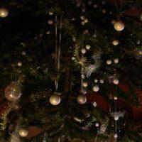 Un sapin de Noël renversé