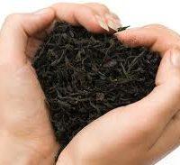A la découverte des thés