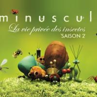 Minuscule, saison 2 en DVD