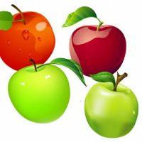 Zoom sur : la pomme.