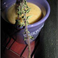 Soupe Froide, façon Ratatouille