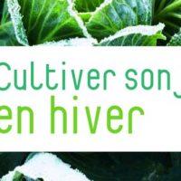 Cultiver son jardin en hiver – Linda Gray