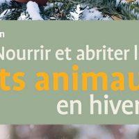 Nourrir et abriter les petits animaux en hiver – Claudia Rösen