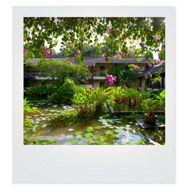 Visuel Club Med Phuket