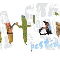 Art Air Festival