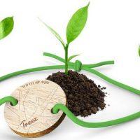 Un bracelet acheté = un arbre planté avec Treez