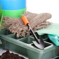 [Dossier] Jardinage pour débutantes