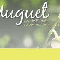 La saison du muguet !