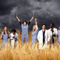 Tu sais que tu es vraiment fan de Grey's Anatomy quand...