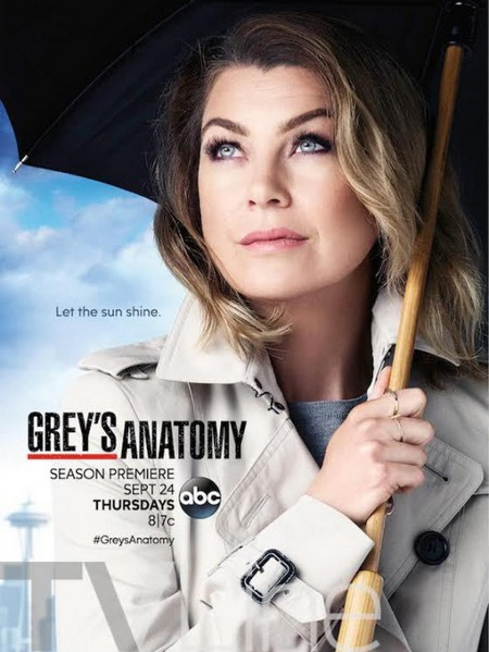 10 bonne raisons de NE PAS regarder la saison 12 de Grey's Anatomy