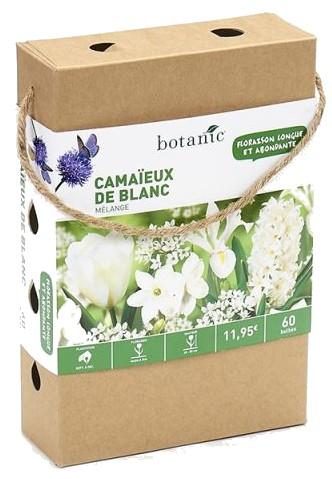 60-bulbes-camaeux-blanc-valisette