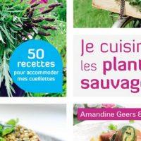 Je cuisine les plantes sauvages - A. Geers et O. Degorce