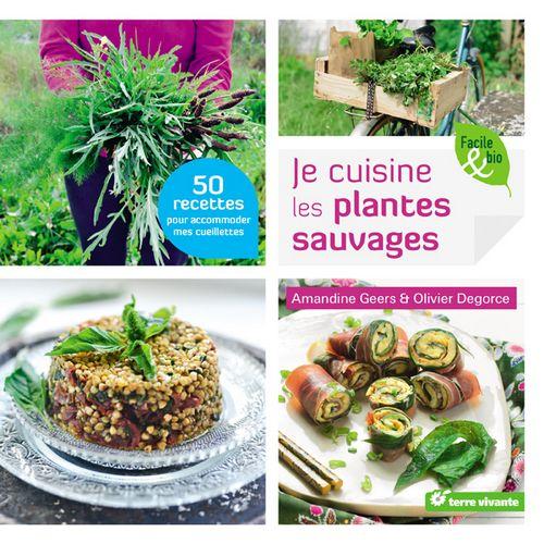 je cuisine plantes sauvages