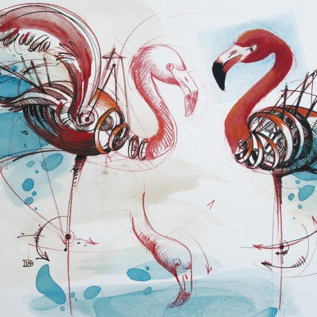 oeuvre-d-art-contemporain-phoenicopterus-ruber-ruber-10-denis-poughon-illustration