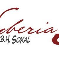 Syberia 3 : trailer de lancement