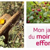 Mon jardin du moindre effort – Sandrine Boucher et Alban Delacour