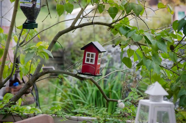 6 tendances jardin printemps t 2018 so what. Black Bedroom Furniture Sets. Home Design Ideas