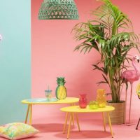 Tendance déco : on adopte le style tropical