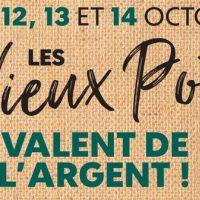 Vos vieux pots vous rapportent en octobre chez Truffaut
