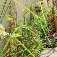 Végétaliser les mini-espaces urbains – Leslie Garcias
