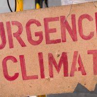Marches mondiales pour le climat (et contre Monsanto)
