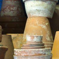 Collecte de vieux pots et troc de plantes chez Truffaut