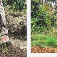 Jardiner ça peut pas faire de mal! - Blaise Leclerc