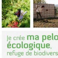 Je créé ma pelouse écologique, refuge de biodiversité – Aymeric Lazarin