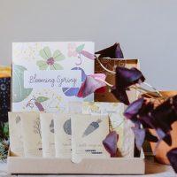 5 bonnes raisons de craquer pour La Box à Planter