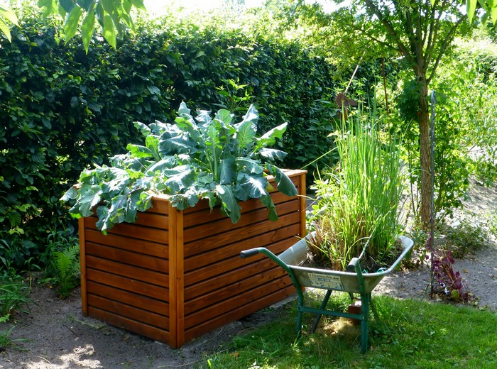 créer son jardin potager