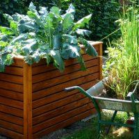 4 idées pour créer son jardin potager