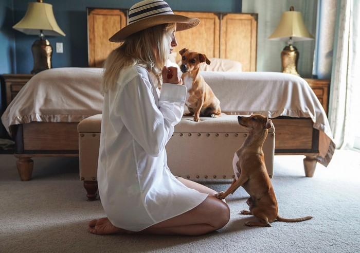 Comment pratiquer l'éducation positive avec son chien