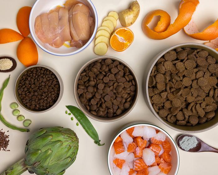 croquettes ingrédients naturels chiens